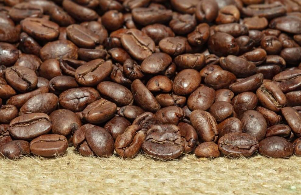 шел из кофейного зерна картинки часть бухты окаймлена